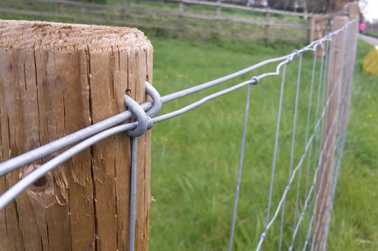 Galvanised U Nails Netting Fencing Staples Chicken Wire Mesh Fences